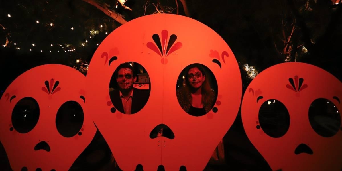 Así puedes disfrutar del Día de Muertos y Halloween en GDL