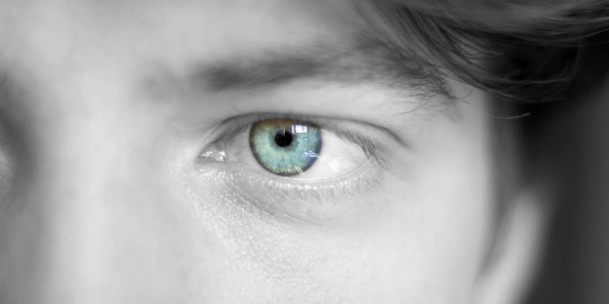 Las pupilas se ajustan al brillo ayudadas por la memoria