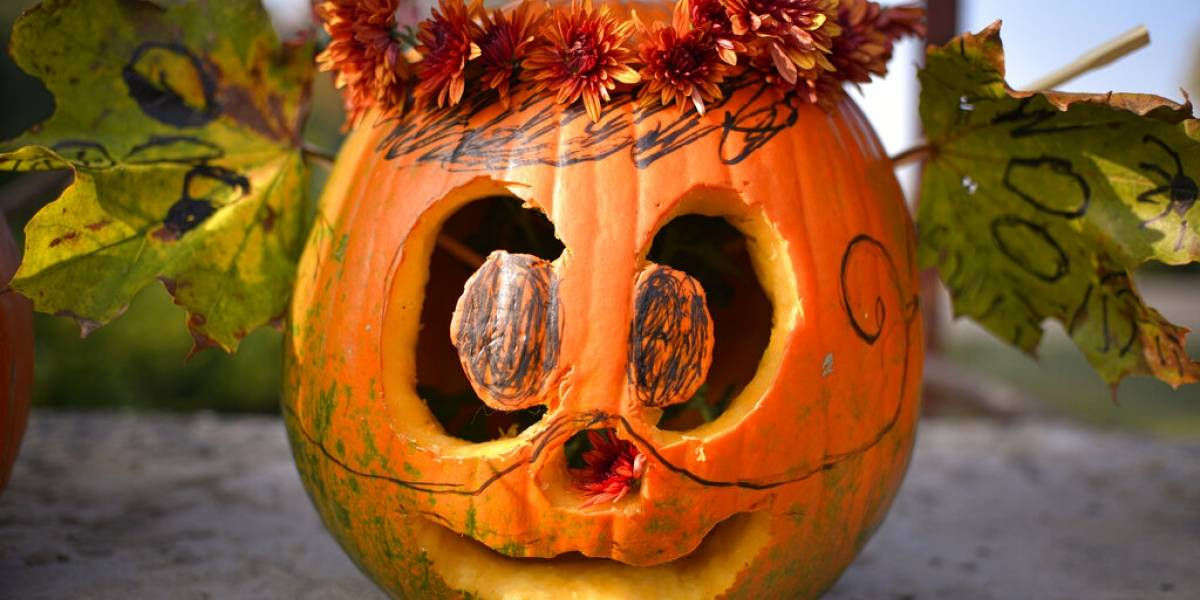 Tallan más de 30 mil calabazas en evento tradicional de Halloween