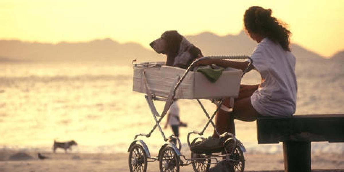 Menos niños, otras opciones: Así han cambiado las familias tradicionales