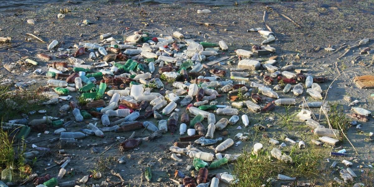 Tres corporaciones son señaladas como responsables de la mayoría de los desechos plásticos en el planeta