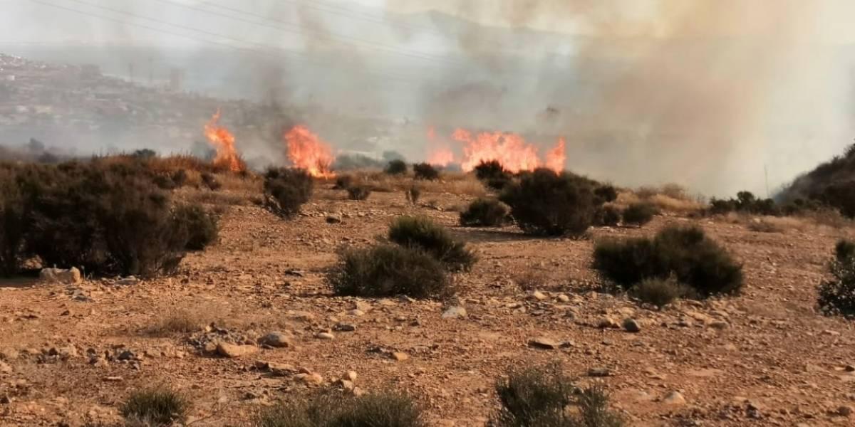 Seis nuevos incendios en Baja California dejan un muerto