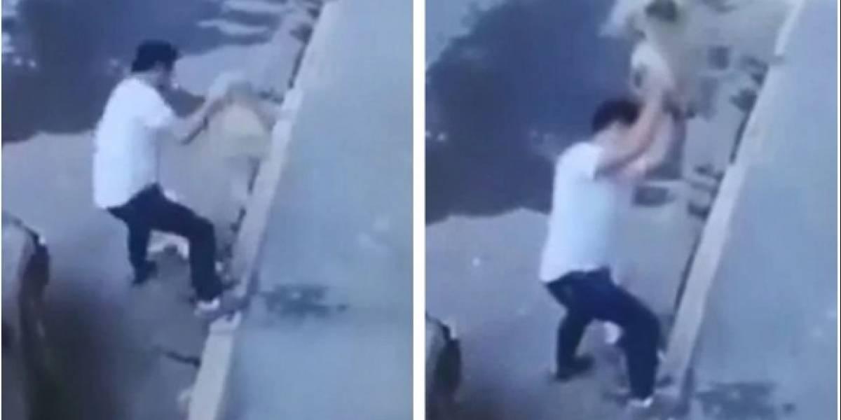 (VIDEO) Detuvieron a hombre que lanzó y mató a perro de manera violenta