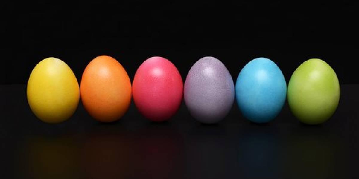 Científicos resuelven el por qué los huevos son de diferentes colores