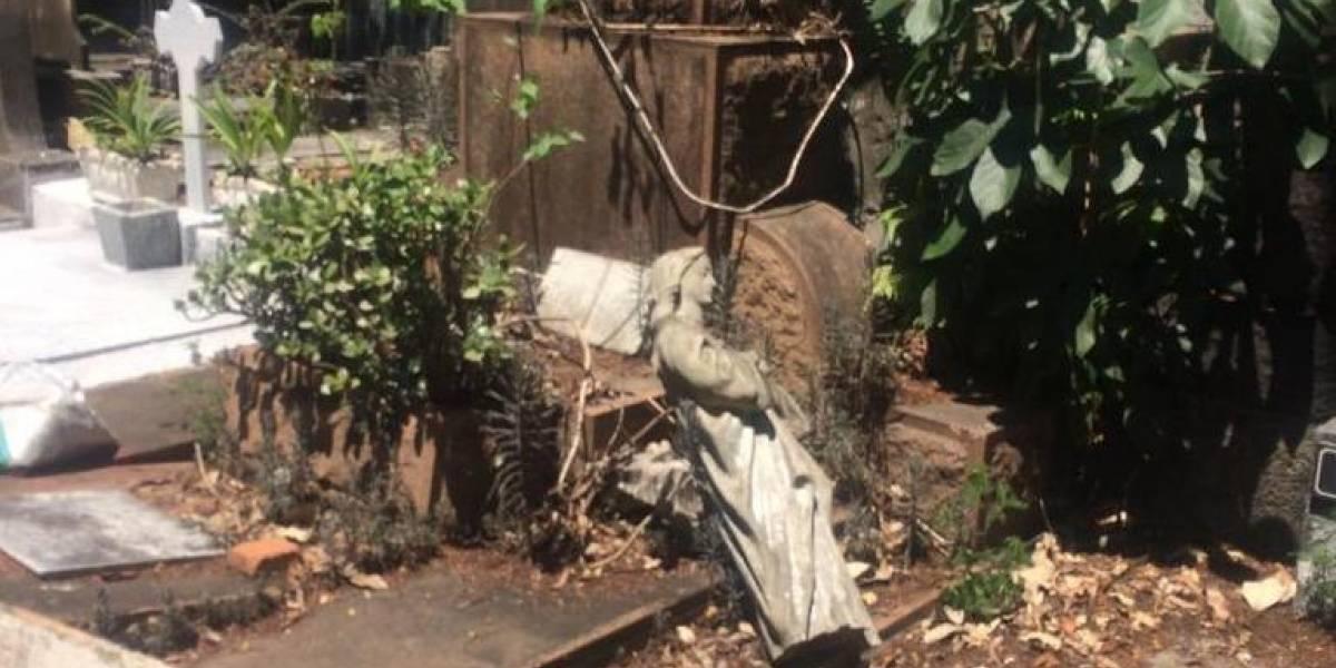 Vandalismo e acúmulo de lixo são principais queixas em cemitérios de São Paulo