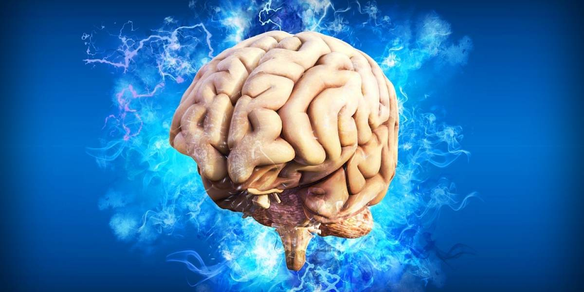 El cerebro tiene un sistema para protegerse de la muerte