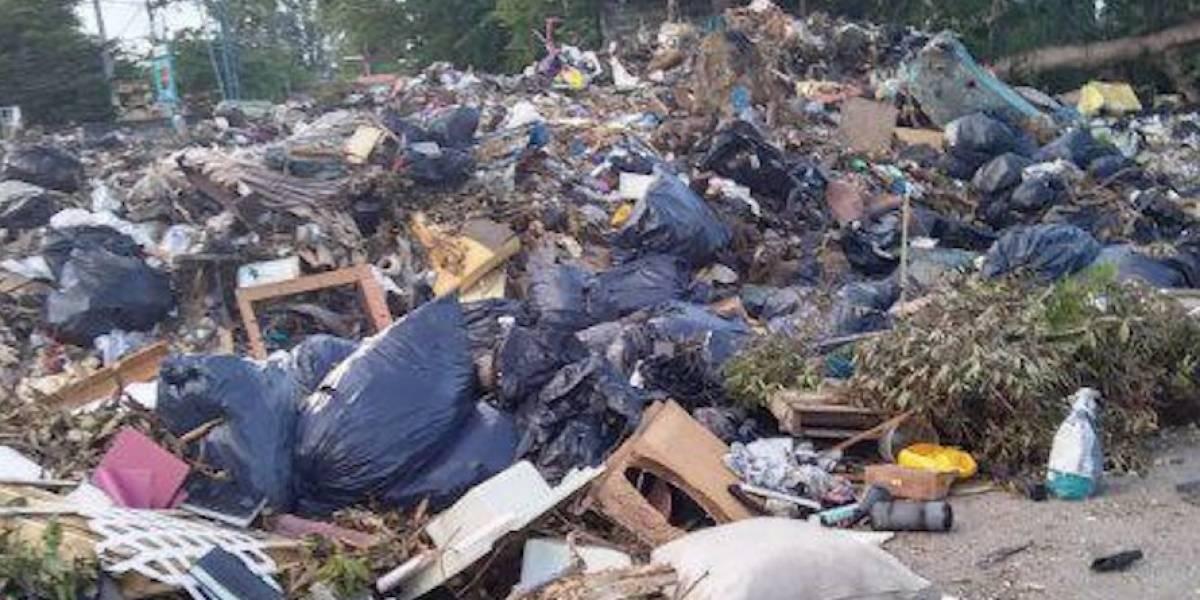 Denuncian parque de pelota en Loíza se convirtió en vertedero de basura