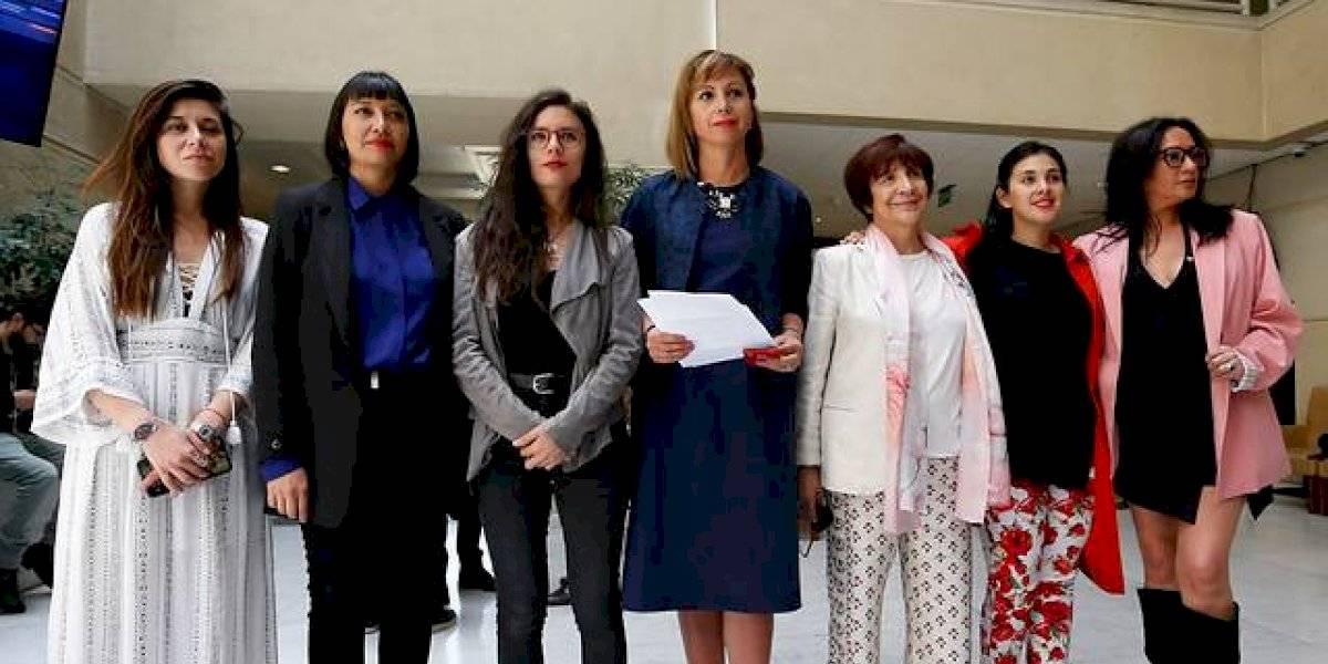 """""""En esto no hay doble estándar"""": Bancada Feminista solidarizó con carabineras agredidas y criticó a ministra Plá"""