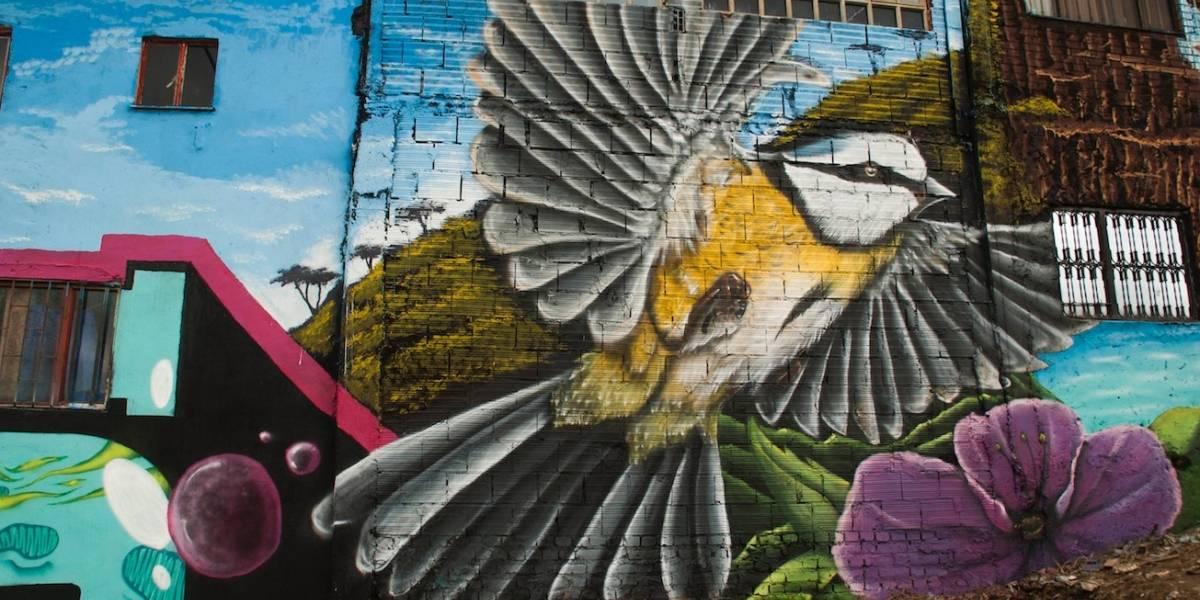 Artistas cambiaron la imagen de famoso barrio bogotano haciendo mural de 700 metros
