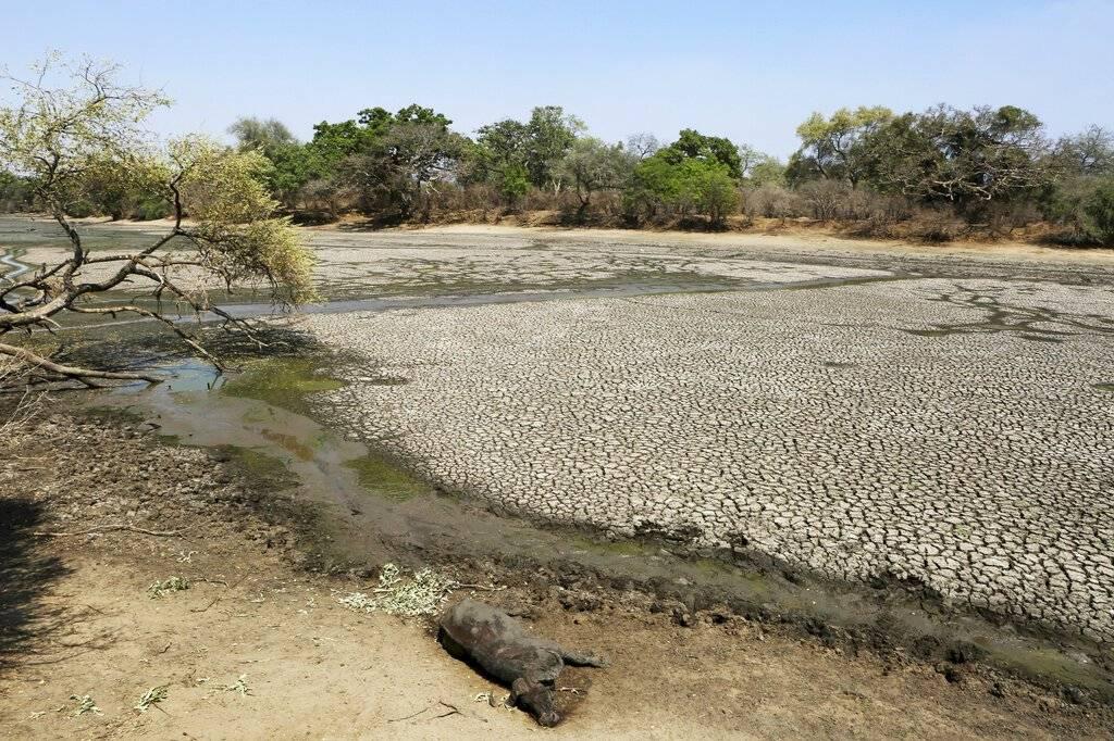 La sequía que azota Zimbabue