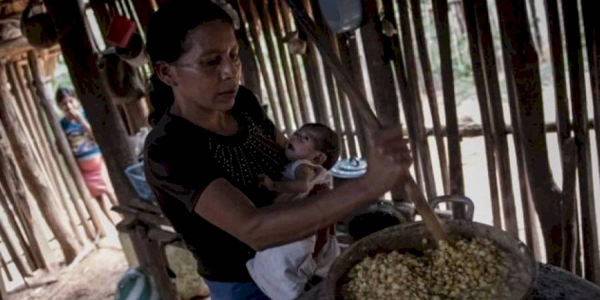 Casos de desnutrición aumentaron durante 2019 pero disminuyeron las muertes