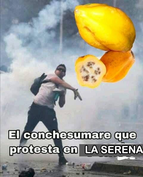 meme protesta