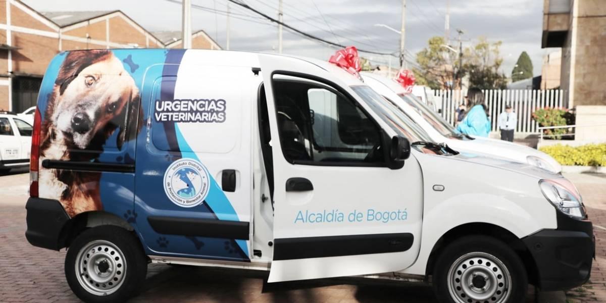 Bogotá estrena unidades móviles de urgencias para animales sin hogar
