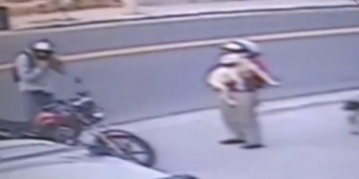 VÍDEO: Cadela é furtada de petshop na Grande São Paulo