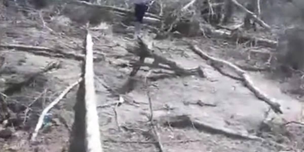Menor de 16 años habría sobrevivido al bombardeo del Caquetá