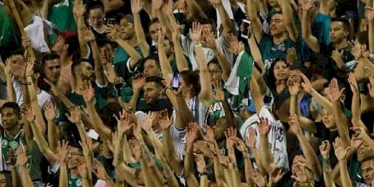 Campeonato Brasileiro 2019: como assistir ao vivo online ao jogo Goiás x Santos
