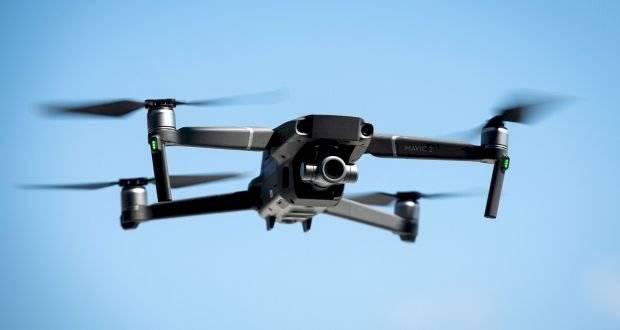 Coronavirus: hombre pasea a su perro con un drone por la cuarentena