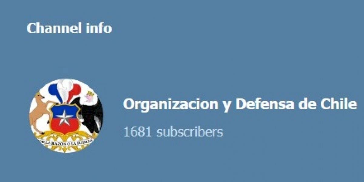 """Filtran supuesto canal de Telegram de los chalecos amarillos chilenos: """"Hay que enfrentarlos con convicción y valentía"""""""