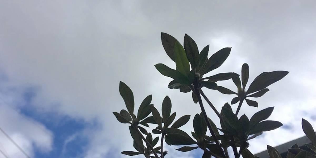 Pronóstico: Día soleado, con viento y posibilidades de lluvia o llovizna