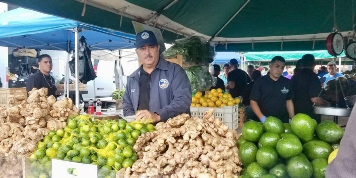 Sobre 30 municipios se benefician de mercados agrícolas