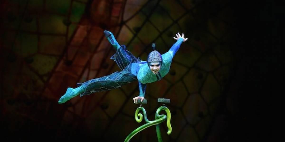 Cirque du Soleil: Una invasión de insectos mágicos llegará a Guatemala