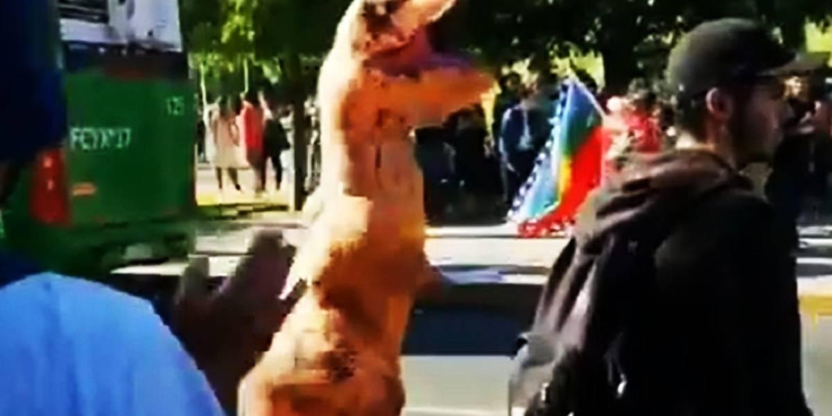 Video: Carabinero en moto atropelló al simbólico dinosaurio de las marchas en Viña del Mar
