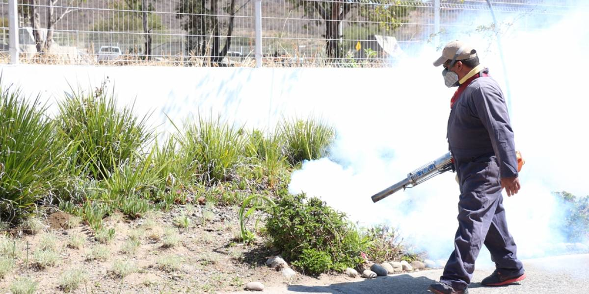 Jalisco encabeza aún a nivel nacional por casos de dengue