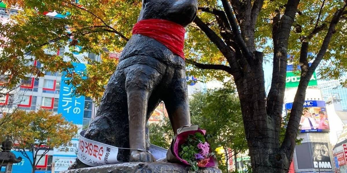 Chilenos intervinieron estatua de Hachiko en honor al