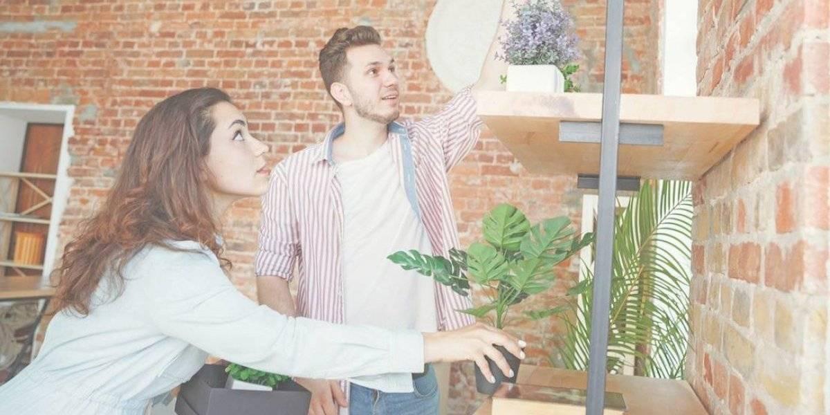 Los mejores elementos para decorar tu casa