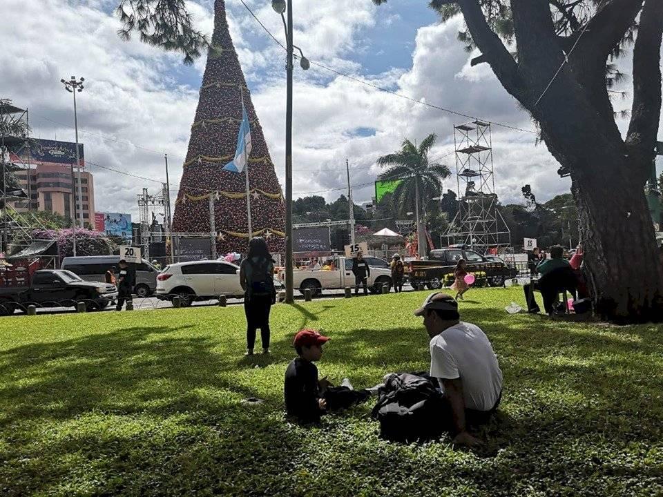 Comuna colabora con los organizadores del Árbol Gallo. Foto: Juan Carlos Chanta