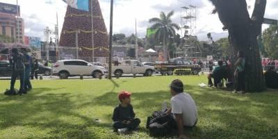 Comuna colabora con los organizadores del Árbol Gallo.