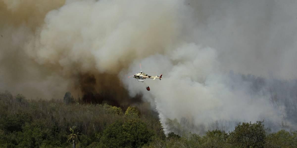 Megaincendio en región de Valparaíso: alerta roja por 500 hectáreas arrasadas y evacuaciones preventivas por hogares en peligro