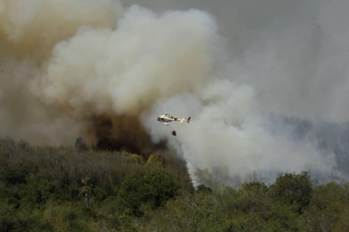 Megaincendio en región de Valparaíso: alerta roja por 500 hectáreas arrasadas y evacuaciones preventivas por hogares en peligro - Publimetro Chile