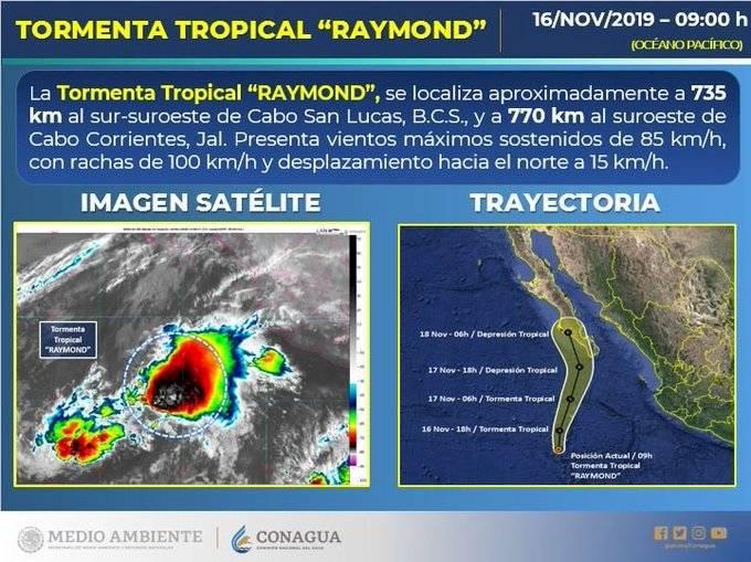 """Información sobre """"Raymond"""""""