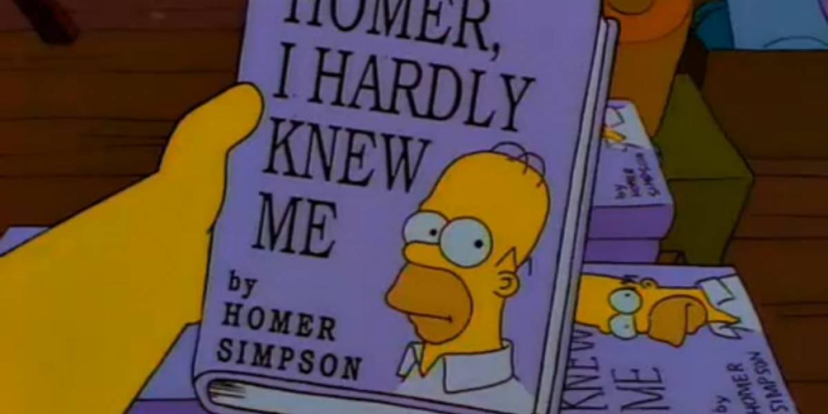 Los Simpson, La Ciencia Pop, el manga de la Metamorfosis y 31 Minutos lo más prestado en biblioteca digital del Ministerio de Educación