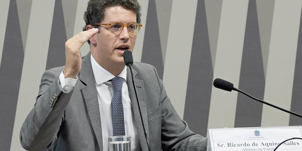 Ricardo Salles atrasou em cinco meses publicação de metas para o Ibama