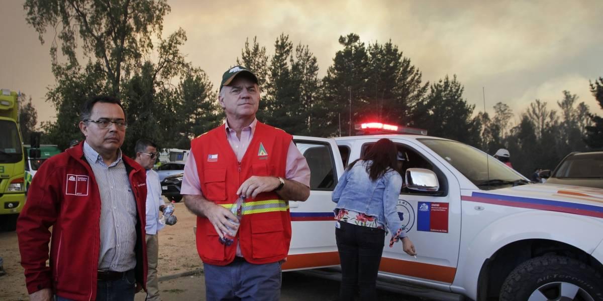 Ya van más de 3.500 hectáreas: Fiscal exclusivo indagará incendios intencionales en Valparaíso