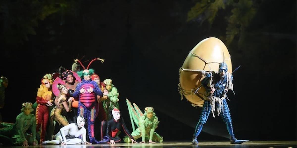 Tu entrada al Cirque Du Soleil ayudará a que un niño de escasos recursos asista a disfrutar del show