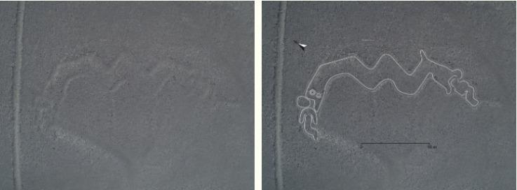 Increíble: Expertos descubren 140 nuevos dibujos en la ciudad de Nazca en Perú