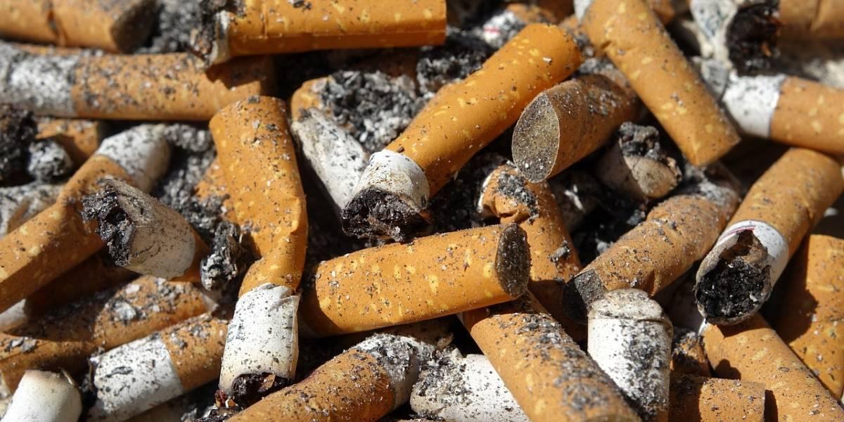 Imagens assustadoras mostram pulmão de homem que fumou diariamente por quase 30 anos