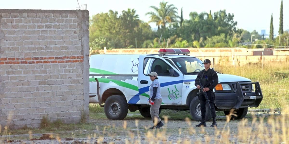 Aumenta a 30 los cadáveres hallados en finca de El Zapote, Jalisco