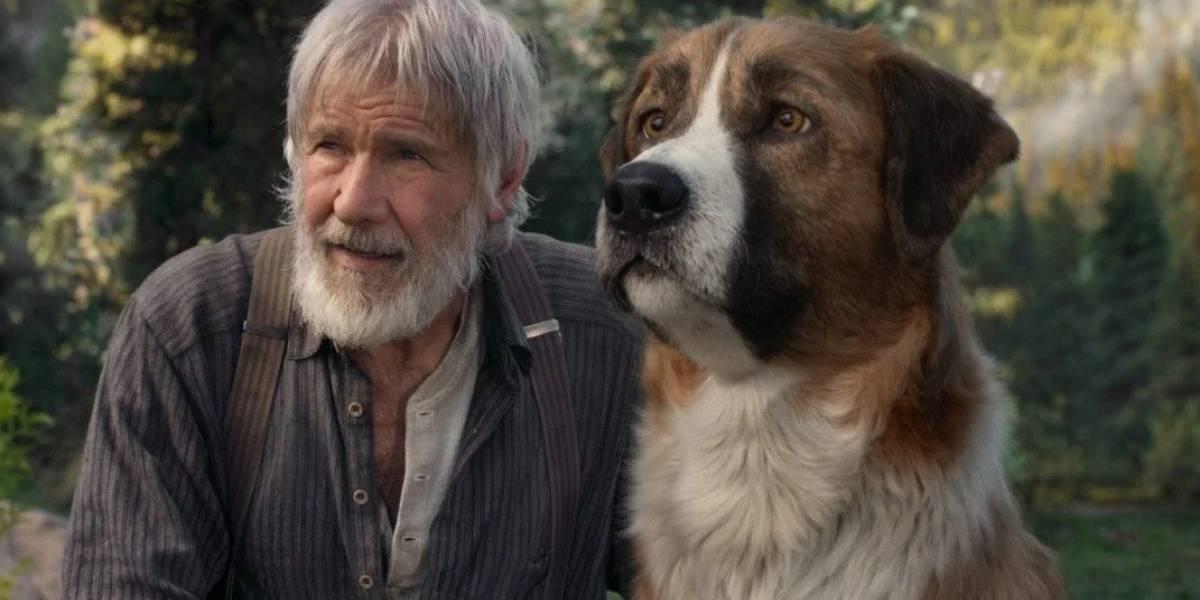 Harrison Ford vira amigo de cachorro fofíssimo em trailer do filme 'O Chamado da Floresta'