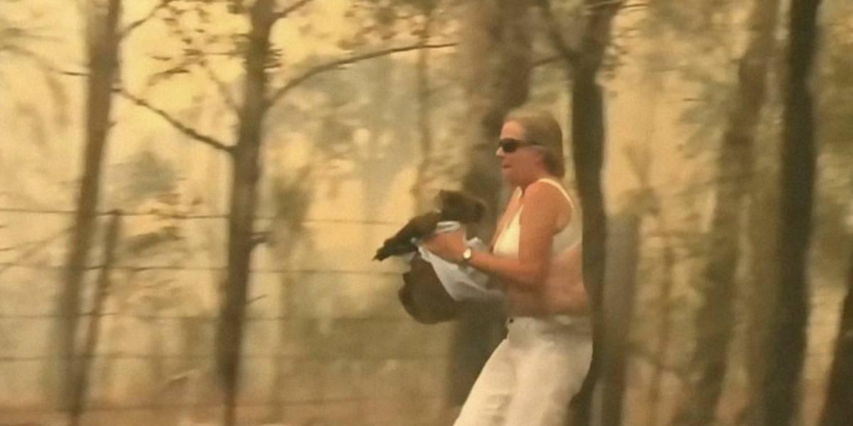 FUERTE VIDEO. Mujer arriesga su vida para salvar a un koala de un incendio