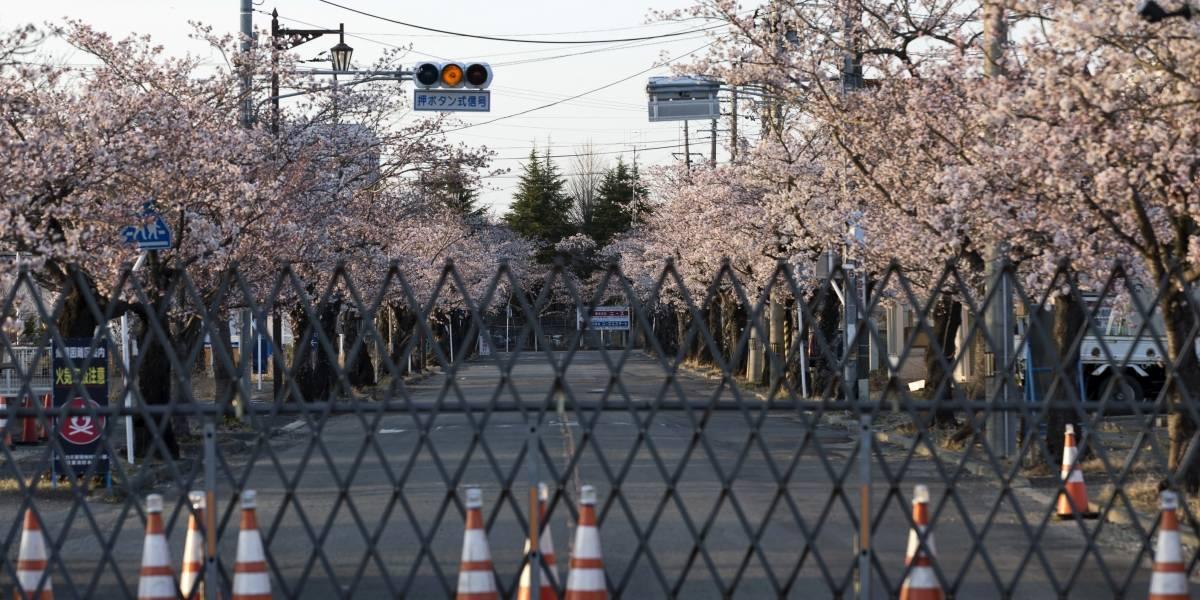 Japón considera seguro verter agua de Fukushima al mar