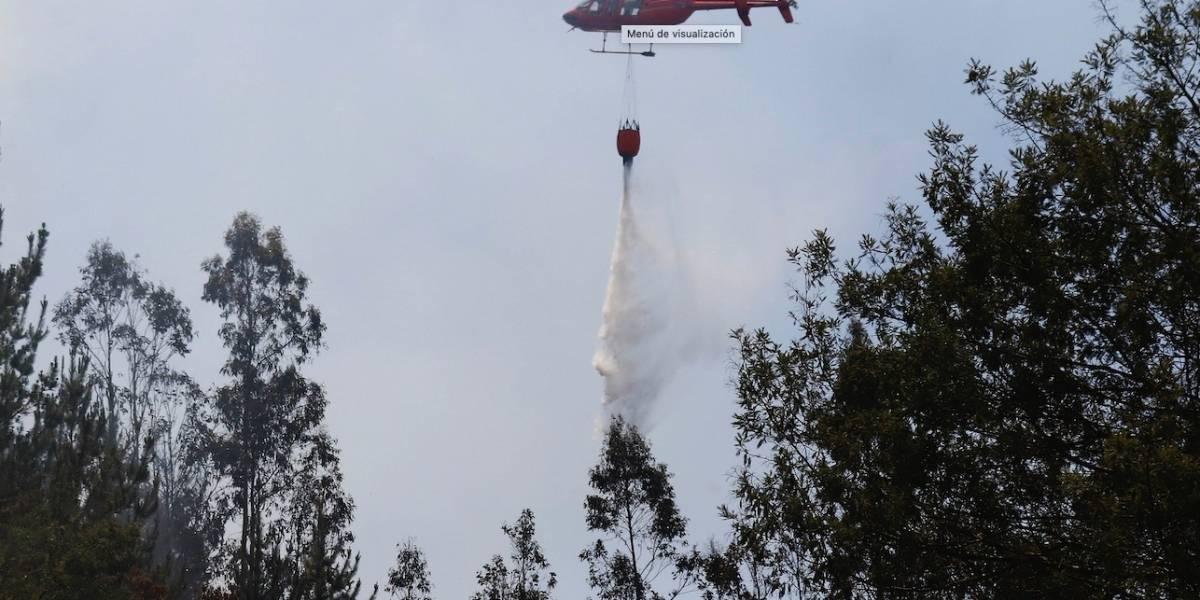 Onemi reporta cinco incendios forestales activos a nivel nacional