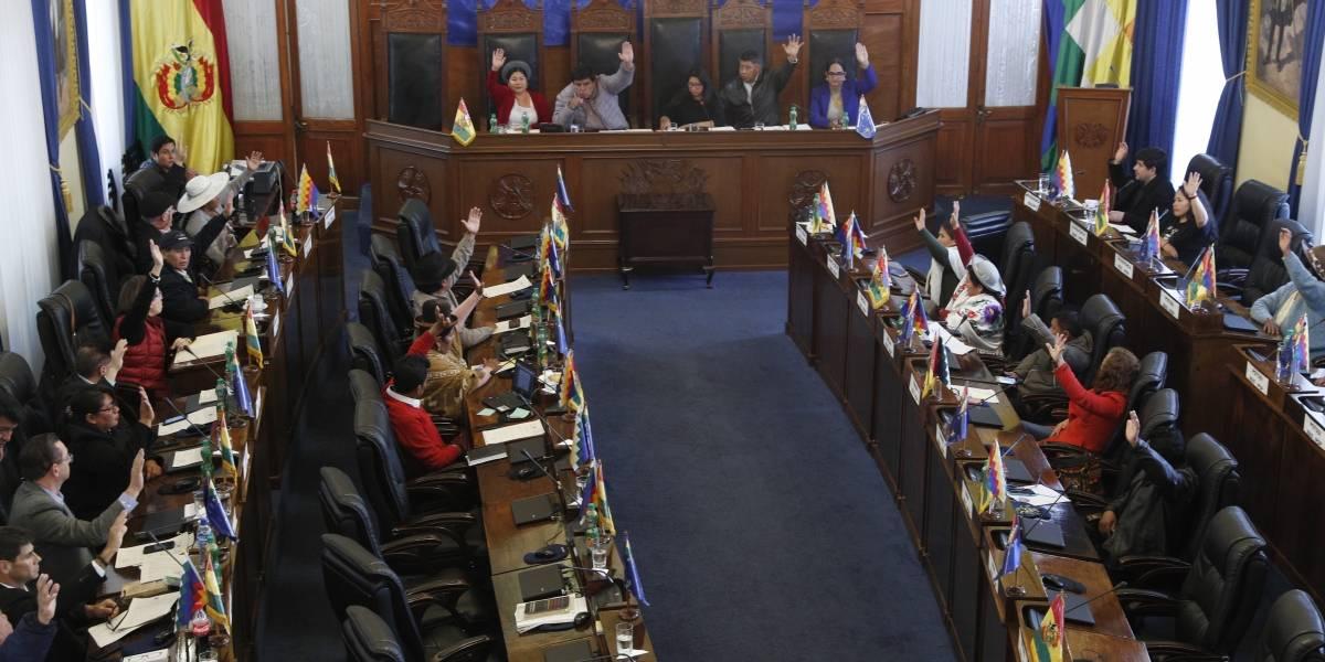 Senado de Bolivia aprueba convocatoria a elecciones presidenciales