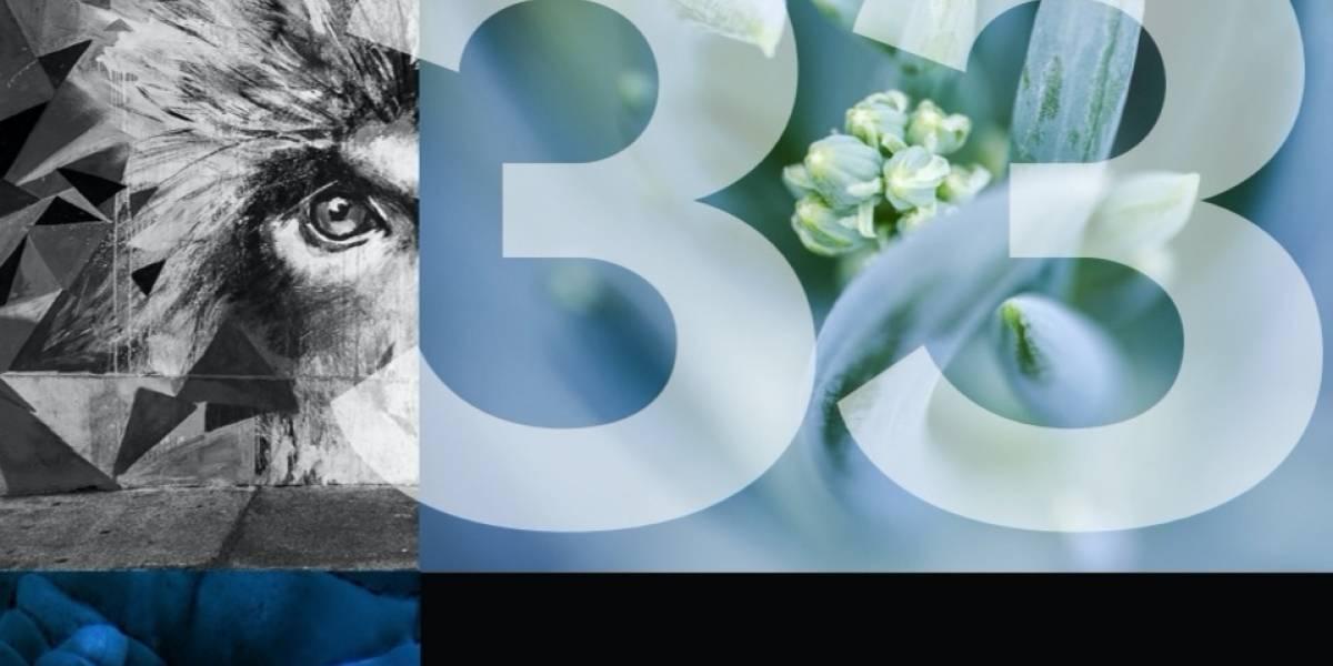 Rayados por las fotos presentó obra colectiva de 33 autores en diversos formatos