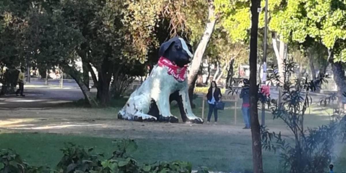 """""""Con el perrito no"""": acusan que desconocidos vandalizaron estatua del """"Negro Matapacos""""  y la tiñeron de verde"""