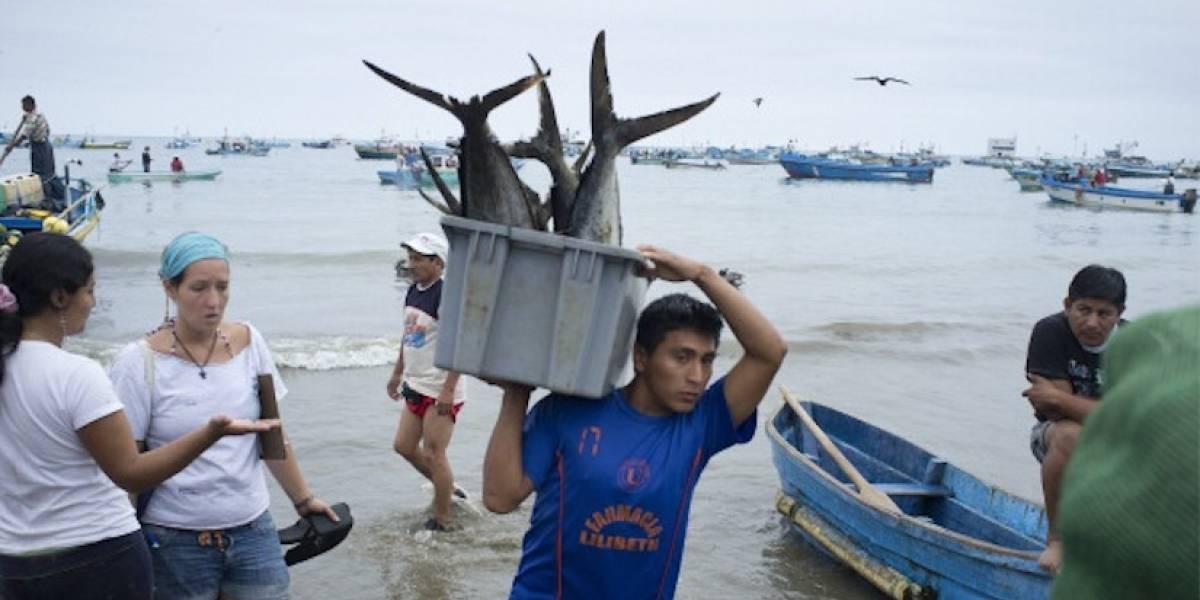 UE insta a aprobar ley de pesca para esquivar tarjeta roja al atún de Ecuador