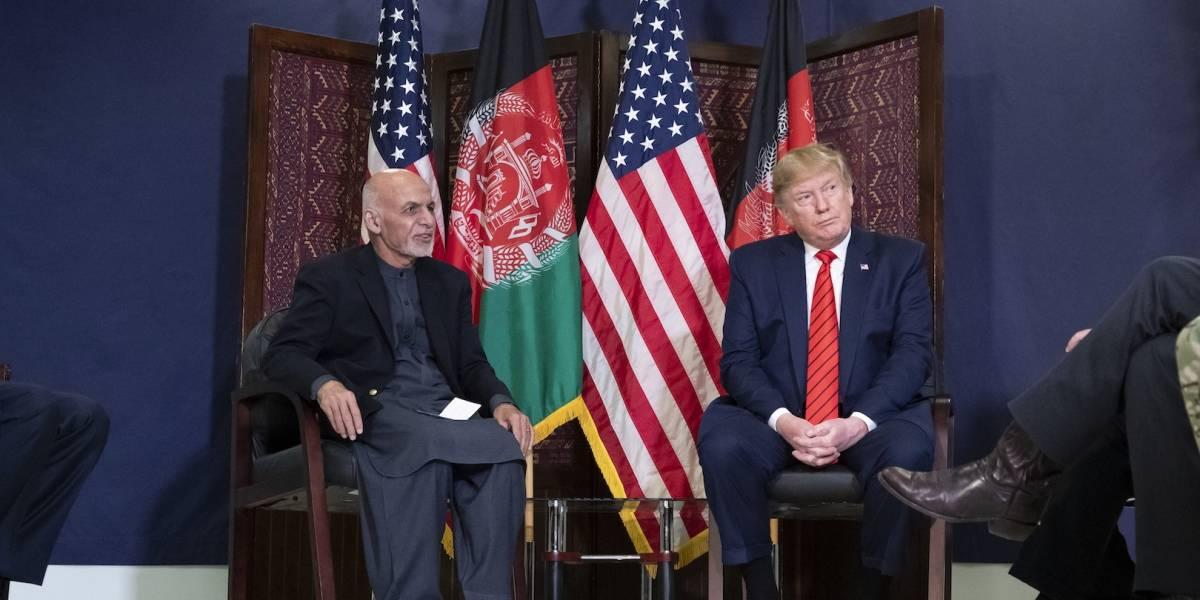 Talibanes rechazan haber iniciado diálogo de paz con Trump
